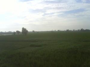 Mera Punjab 02